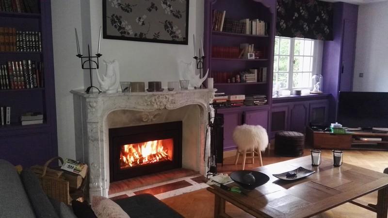 foyer à bois éthanol flamme